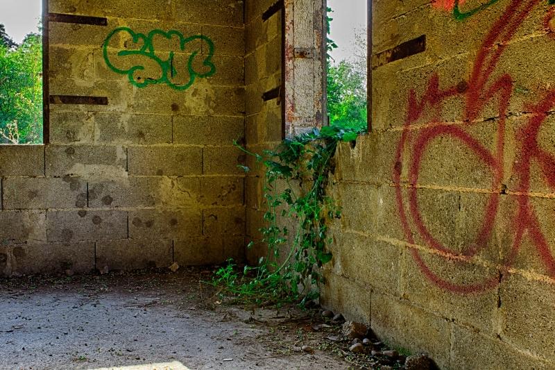 Klein_Aleppo (7 von 17)